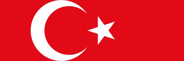 Test to determine your level in Turkish